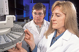 Geneticist and food science professor examine a vial of oil.