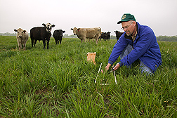 Brian Northup collects forage samples in a pasture: Link to photo information