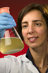Maria Brandl holds vial containing protozoa in a liquid medium. Link to photo information