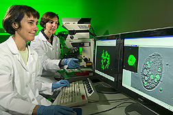 Aileen Haxo and Maria Brandl view computer screens displaying micrographs of Salmonella cells within food vacuoles of protozoa. Link to photo information