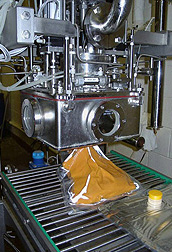 Photo: Sweetpotato purées being made using continuous-flow microwave technology. Link to photo information