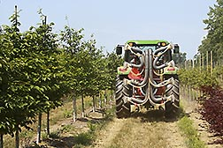 Tractor with new variable sprayer applying pesticides at a nursery. Link to photo information