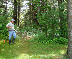 Photo: Craig Boland, owner of Grassman, LLC, sprays to the perimeter of a homeowners' yard. Link to photo information