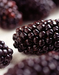 Closeup of a blackberry. Link to photo information