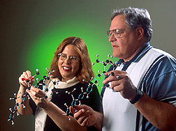 Photo: Chemist Betty Burri and biologist Terry Neidlinger compare models of tracer beta-carotene and natural beta-carotene. Link to photo information