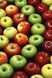 Golden Delicious, Gala, Granny Smith, and Red Delicious apples. Link to photo information