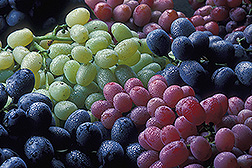 Purple, red and green grapes. Link to photo information