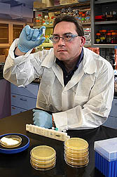 Photo: Microbiologist studying small test tube. Link to photo information