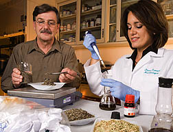 Photo: ARS technician David Bozzi (left) and microbiologist Diana Franqui study samples of pulp from city garbage and plant material. Link to photo information
