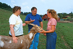 Scientists and producer discuss goat nutrition