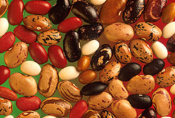 Photo: Various types of beans. Link to photo information