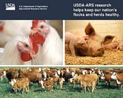 Research Helps Keep Flocks & Herds Healthy