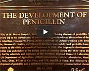 Video: The Development of Penicillin