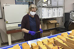 Technician Brenda Lawrence organizes packages of rice seed in the lab