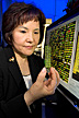 Immunologist holding a gene chip containing up to 10,000 chicken genes.