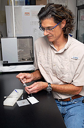 Scientist using a red imported fire ant test kit