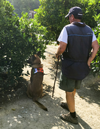 Dog detector and her handler.