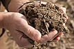 Two hands holding handful of soil