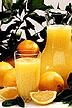 Oranges and pitcher of orange juice