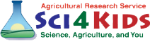 "Banner graphic that reads ""Agricultural Research Service-Sci4Kids Kids: Science, Agriculture, and You."""