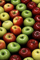 Photo: Alternating rows of red and green apples