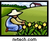 Graphic of a gardener kneeling by a flower garden with a house in the background. / Copyrighted image used with permission by NVTech Inc.