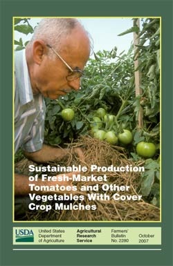 Cover, photo of scientist examining mulch around tomato plants: Click here to view publication online (pdf file).