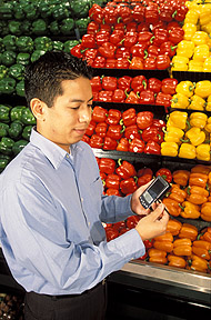 Using a personal digital assistant, nutritionist Vincent de Jesus tests the new nutrient database program.