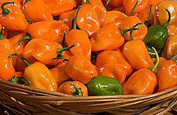 Photo: Display of fresh TigerPaw peppers in a wicker basket. Link to photo information