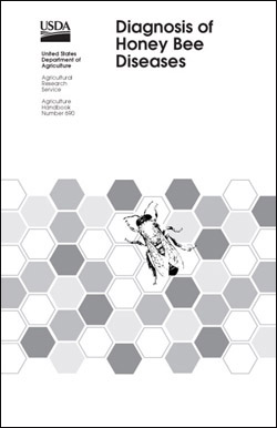 Cover with illustration of bee on background of hexagons: Click here to view publication online (pdf file).