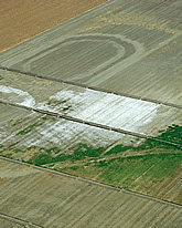 Aerial view of central California fields suffering from severe salinization. Link to photo information