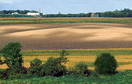 On a Minnesota farm field, light-colored areas are hilltops where soil has eroded; darker spots are low areas where soil has been deposited.