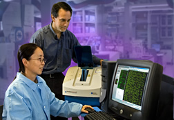 Darrell Bayles and Yanhong Liu analyze microarray data from a microarray scanner.