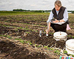 Photo: Scientist collecting gas emissions from field. Link to photo information