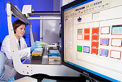 Photo: ARS molecular biologist Lisa Ainsworth assesses soybean samples for the impact of ozone. Link to photo information