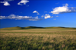 Photo: Semi-arid rangeland near Cheyenne,Wyoming.