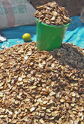 Photo: African mango kernels. Link to photo information