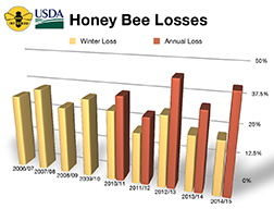 Graph depicting winter and annual honey bee losses from 2006 to 2014