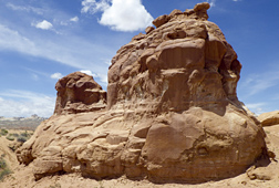 A column of sandstone rock riddled with A. pueblo nests in the southwestern United States.