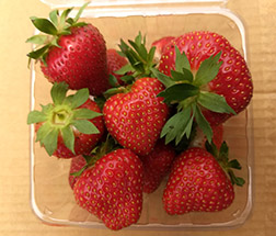 Keepsake strawberries in a container