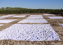 Pulverized paper spread evenly over plots