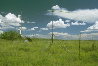 Tucson grassland