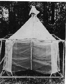 photo of Malaise trap