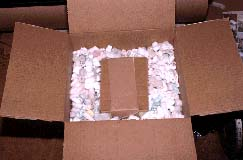 photo of box with packing material and specimen box being readied for mailing