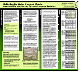 Poster titled Yield, Quality, Water Use, and Weeds in Annual Forage-Spring Durum Cropping Systems.