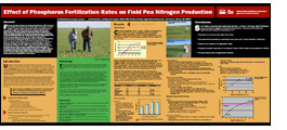 Poster titled Effect of Phosphorus Fertilization Rates on Field Pea Nitrogen Production.