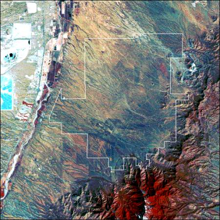 Landsat image of the Santa Rita Experimental Watershed