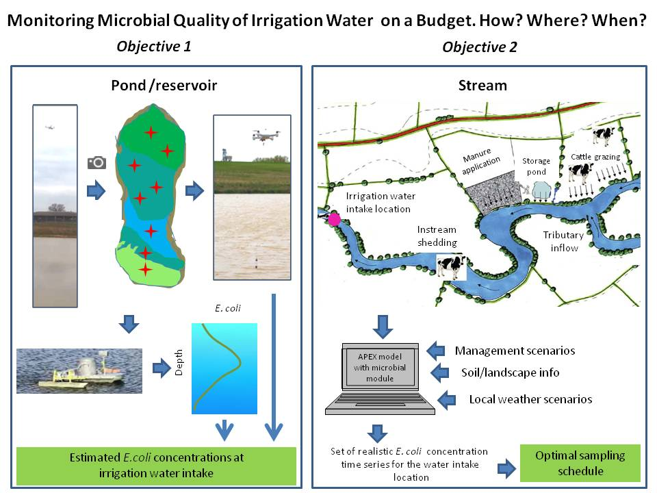 Explanatory figure of microbial quality monitoring processes for a pond/reservoir and a stream