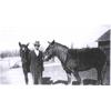Thumbnail of Kessler Plumley and horses