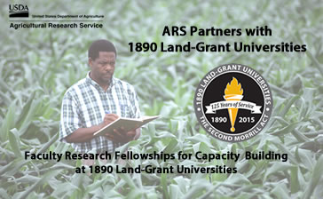 ARS 1890 Research Fellowships